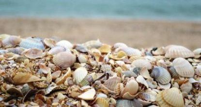 Бесконечные пляжи Арабатской стрелки
