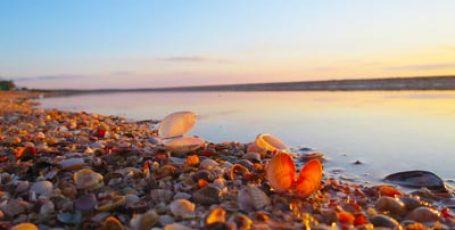 Пляж в Новоотрадном у Казантипского залива