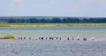 Лето у озера Донузлав в Крыму — рыбалка, отдых, развлечения