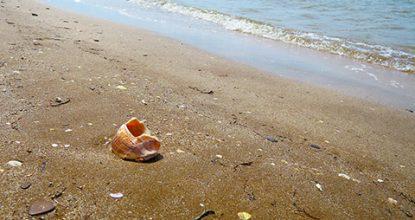 Пляж поселка Южное, Феодосийский залив