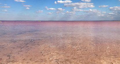 Розовое озеро Сасык-Сиваш у Евпатории