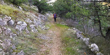 Военная римская дорога в Крыму — по следам легионеров