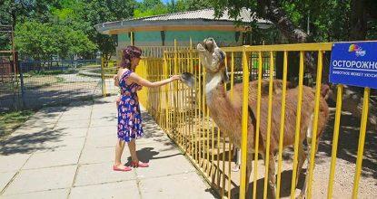 Зоопарк в Детском парке Симферополя