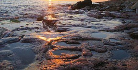 Дикий пляж мыса Херсонес
